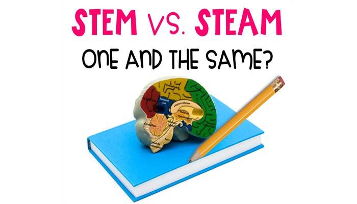 stem và steam